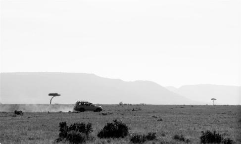 On safari in the Maasai Mara, Kenya