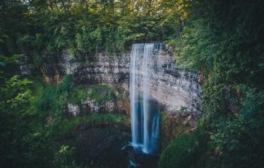 Tews Falls in Summer, Hamilton