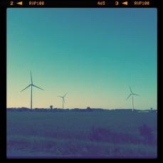 The Windmills.