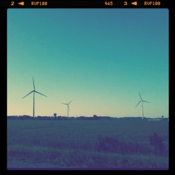 The Windmills.