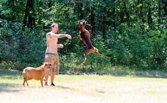 High Flying Tucker