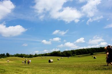 A Walk Amongst Clouds & Hay