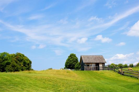 The Sheep Barn