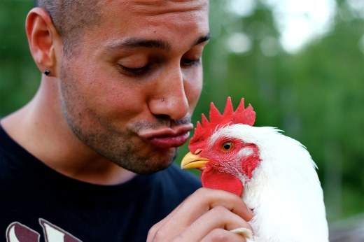 Mike and the Chicken