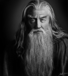 Gandalf Grey Beard