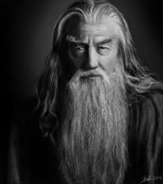 Gandalf Grey Beard