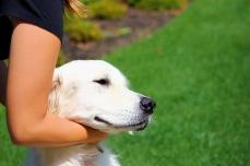 Awesome Dog 3: Macy.