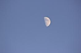 The Fucking Moon