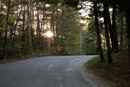 Muskoka's Roads