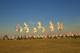 The WayHome flags.