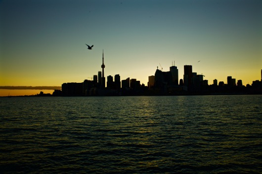 Toronto, You're a Beauty. Photo by Ryan Bolton.