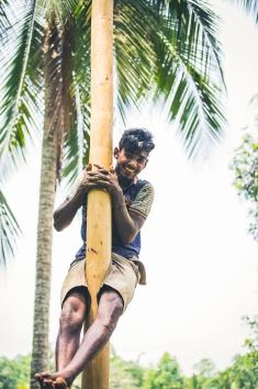 Sri Lanka_Intrepid_RyanBolton-3K5A3171
