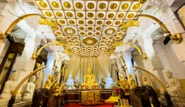 Sri Lanka_Intrepid_RyanBolton-3K5A3345