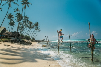 The Stilt Fisherman of Sri Lanka