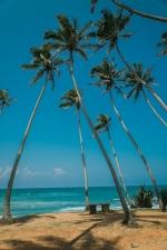 Sri Lanka_Intrepid_RyanBolton-3K5A5033