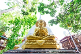 Sri Lanka_Intrepid_RyanBolton-3K5A5220
