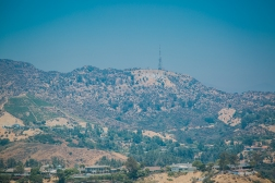 Los Angeles and Joshua Tree_RyanBolton-3K5A9737