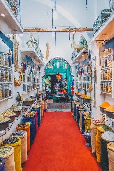 Marrakesh Morocco with Intrepid__RyanBolton-3K5A1457