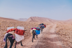Morocco Berbers with Intrepid__RyanBolton-3K5A0170