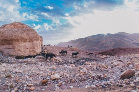 Morocco Berbers with Intrepid__RyanBolton-3K5A1070