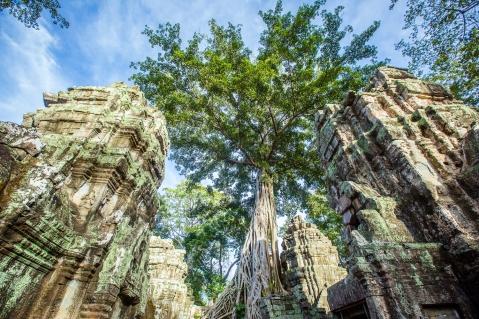 Thailand, Cambodia, Vietnam Adventure__Ryan Bolton-3K5A7355