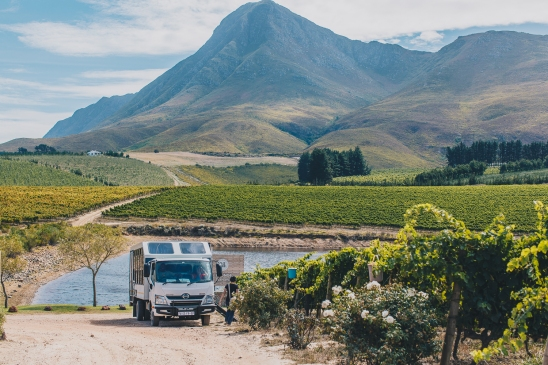 South Africa Adventure with Intrepid__Ryan Bolton-3K5A3436