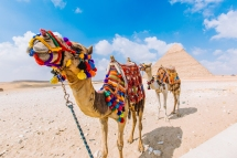 Egypt Content Trip Intrepid__Ryan Bolton-3K5A3609