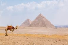 Egypt Content Trip Intrepid__Ryan Bolton-3K5A3740
