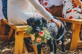Casey + Karla Wedding__Ryan Bolton-3K5A9130