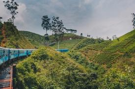 Famous Blue Train in Sri Lanka