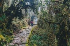 Inca Trail in Peru with Intrepid__Ryan Bolton-3K5A8752
