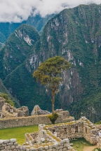 Inca Trail in Peru with Intrepid__Ryan Bolton-3K5A9274